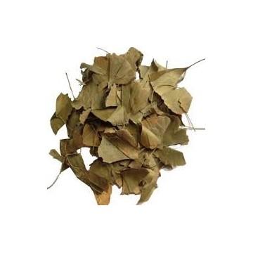 Ginkgo Bloba Yaprağı Çay 30 gr Gingho Bıloba